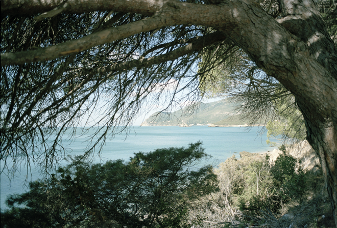 Portinho da Arrábida in film by Twiggs Photography
